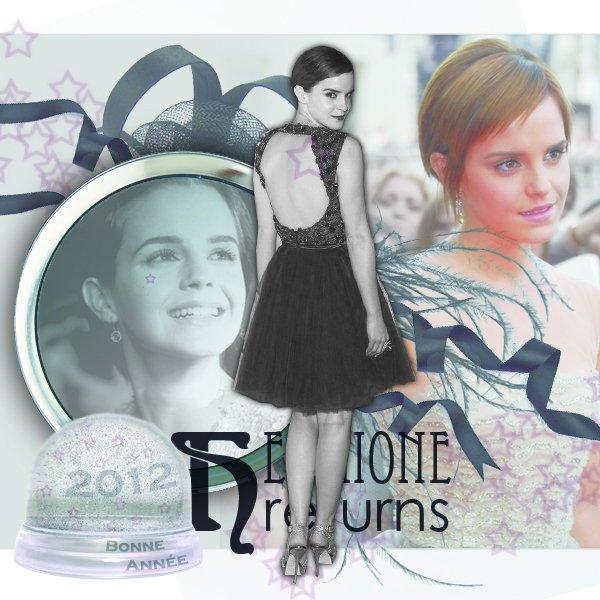 Très Bonne Année 2012