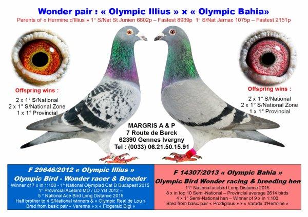 1° NPC St Junien 6602 vieux & Plus rapide de 8939 pigeons