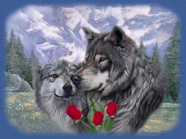 belle et douce soirée mes tits loups bisous