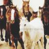 minutes-caval