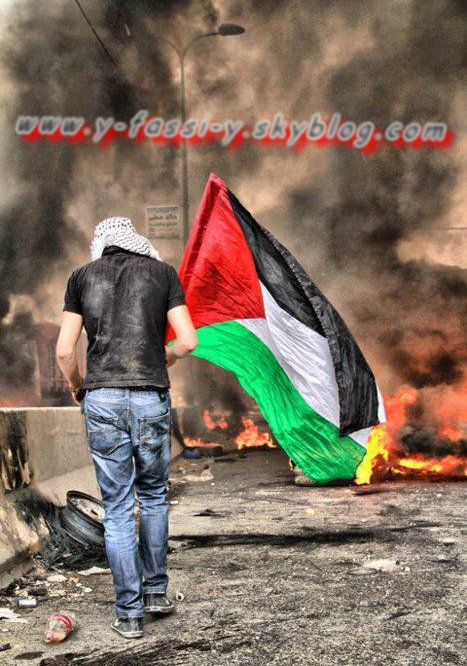 لا أفهم هذه المناورات لا أفهم السياسة، لفلسطين طريق واحد وحيد هو البندقية