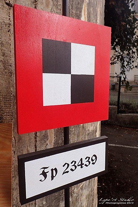 11 AOUT 2014 : ENFIN DE BELLES PHOTOS ! (2ème partie)