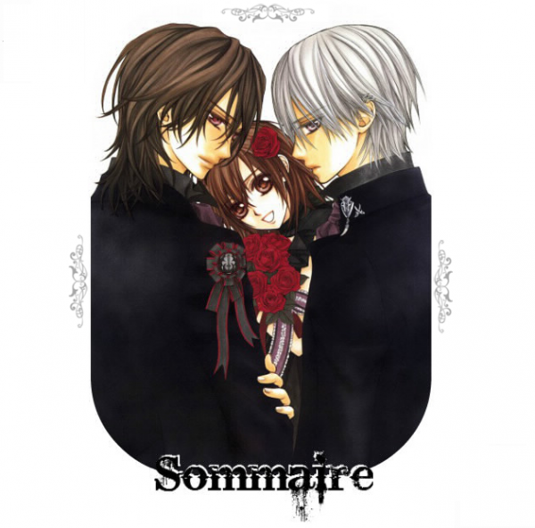 <3Sommaire</3
