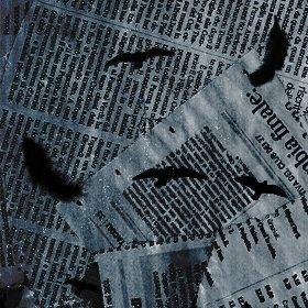 ~ L'envol du corbeau ~