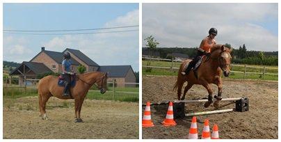 Pour moi,ce bonheur est mon cheval.