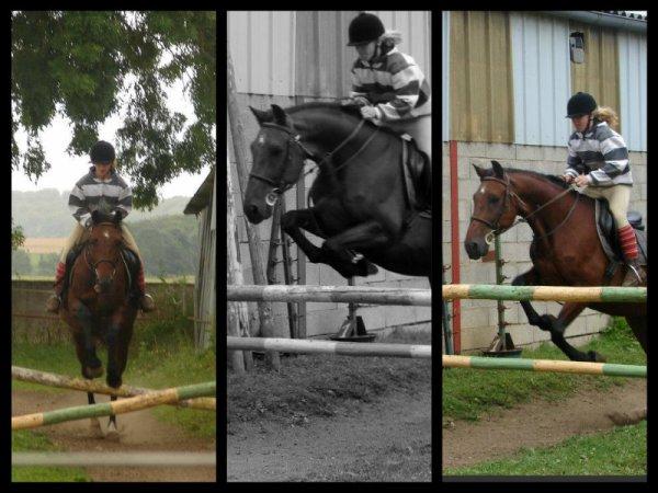 ♥ ~ ₪ Mes diciplines equestre favorites ₪ ~ ♥