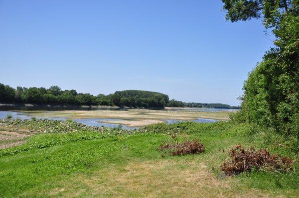 Lundi 17 juin 2019 : Anetz et bord de la Loire (1)
