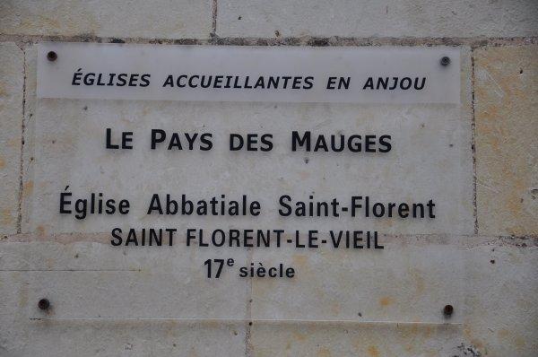 Lundi 01 juillet 2019 : Saint Florent le Viel (4)