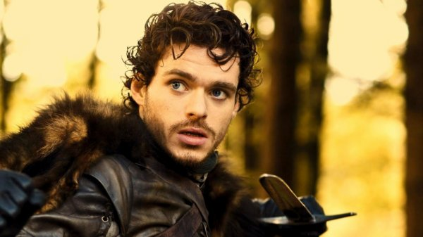Robb Stark (the king of the north)