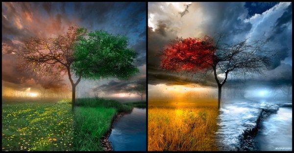 J'adore les 4 saisons comme ça je kiff