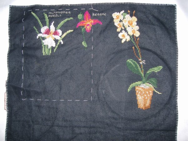 sal orchidées de luc creation objectif 2