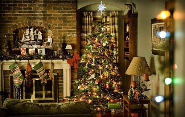 L'arbre de Noël des Swan ! Photo publiée par Bill Condon sur le Twitter Officiel de la Saga.