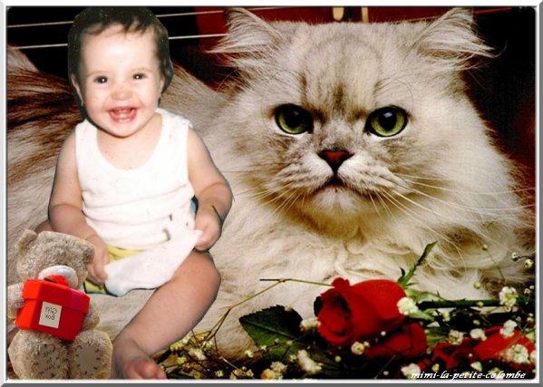 L'histoire de petite mimi ma petite nièce adorée que j'ai élevée et soignée de l'âge de 5mois jusqu'à l'âge de 3ans