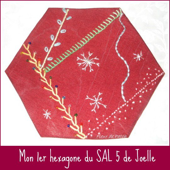 BRODERIE - SAL 5 hexagone 1