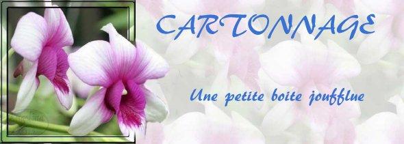 Cartonnage - boite joufflue
