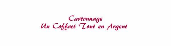Cartonnage - coffret Argent