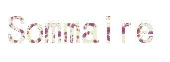 « Sσммαιяє » ♥