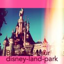 Photo de disney-land-park