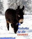 l'histoirde la kabyli