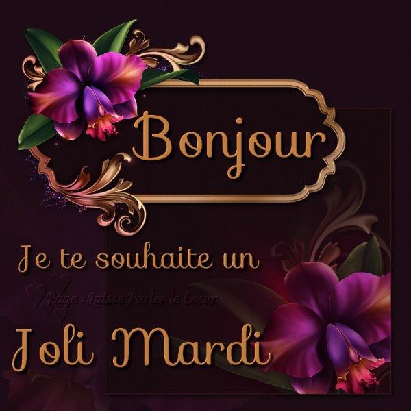 Bonjour Je te souhaite un Joli Mardi