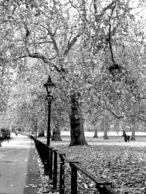 London... Black&White...