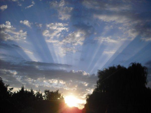 la vie est un rayon de soleil