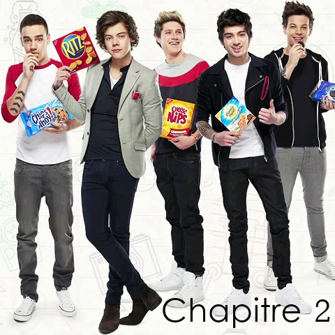 2. Welcom In One Direction's World