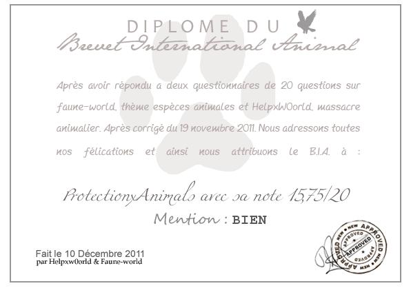 DIPLOME DU B.I.A. : ProtectionxAnimals