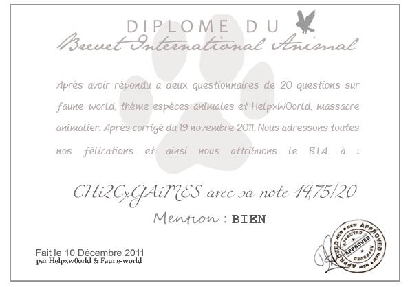 DIPLOME DU B.I.A. : CHi2CxGAiMES