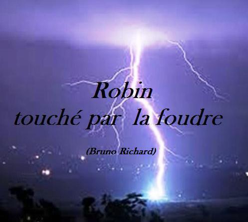 Robin touché par la foudre
