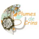 Photo de Plumes-de-Crins