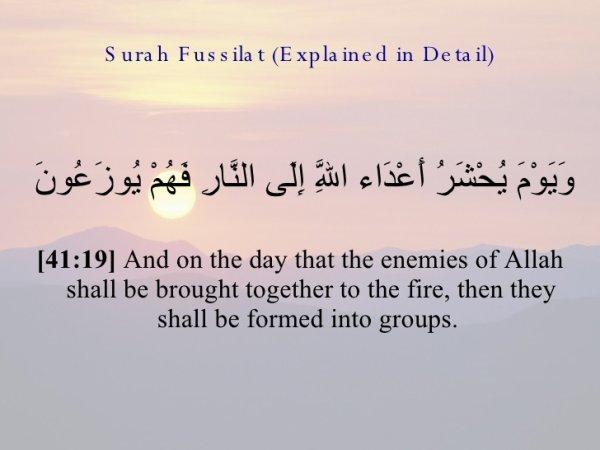 هل الكفار والملحدين والمشركين فقط هم أهل النار؟؟؟؟