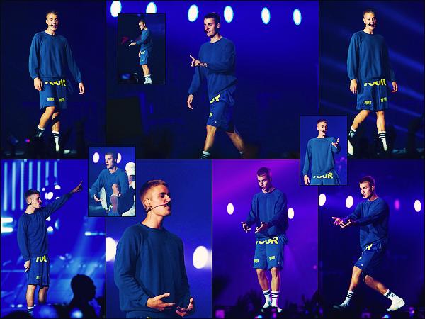 • 24 juin2017 ||C'est dans le cadre du Purpose Tour Staduims que Justin à performé le même soir à Lille en France. Le show c'est dérouler avec en première partie Kinglande suivis de Martin Garrix. Le concert du Bieb's à duré environ 2h ! •