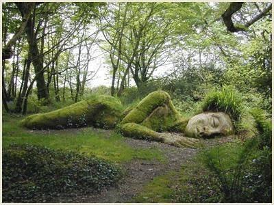 Le secret de La nature dans sa beauté!!