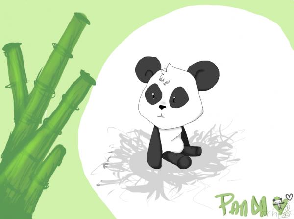Le panda de Jésus