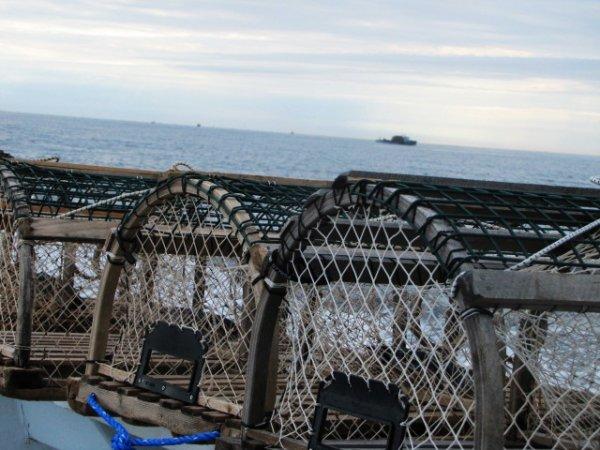 Trape ( cassier) pour pêcher le homard a mon papa (: