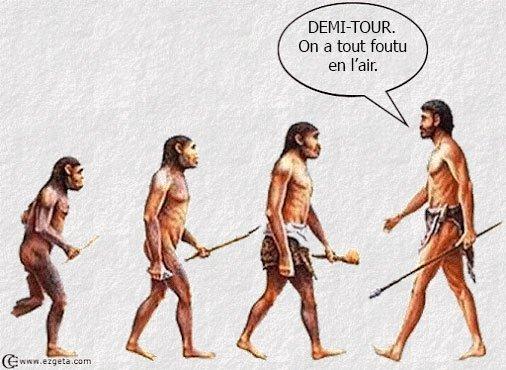 l'évolution des espèces