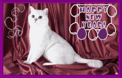 Je vous présente mes meilleurs voeux pour la nouvelle année qui s'approche à grand pas , voila bonne annee 2011 et gros bisous a tous