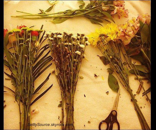 """.  9 Mars 2012 : 4ème jour du tournage de """"Spring Brekers"""".Photo perso'."""