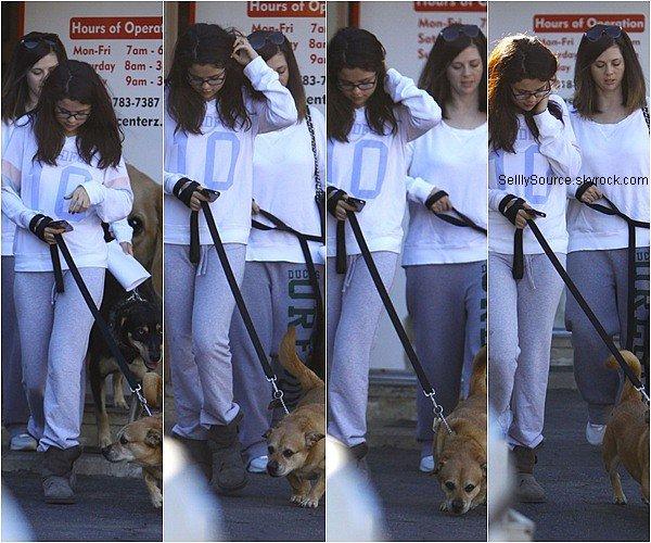 .24.11.2012: Selena & sa maman Mandy on été vu entrain de quittée le vétérinaire à Encino..