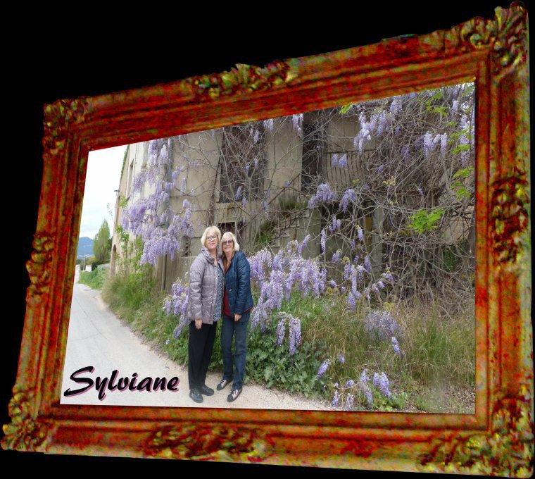 ♥ SYLVIANE ♥