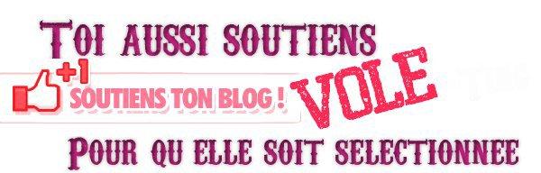 ncis-enquete-speciall est Blog Star !