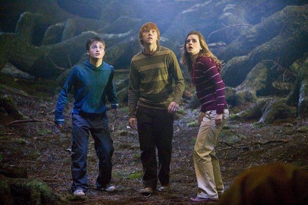 Harry Potter et l'Ordre du Phénix (suite)
