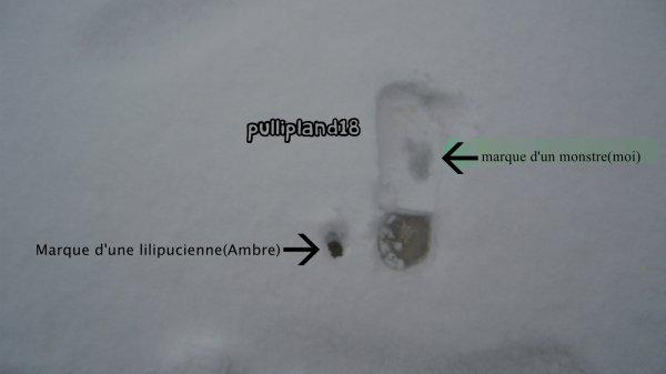 Vive la neige