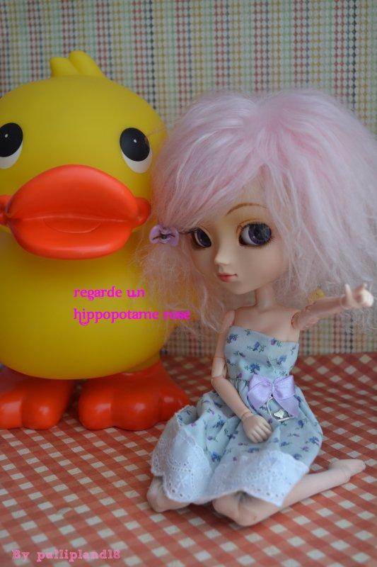 ♥~Pandore et le canard!~♥