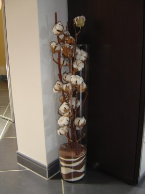 bouquet de fleurs de coton