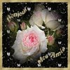 ♥♥♥ Bonjour Bonjour vous !!♥♥♥