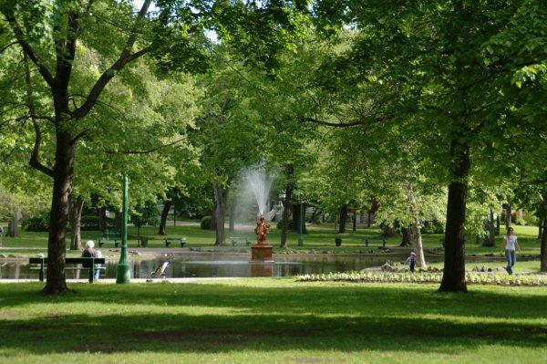 Parc Chapitre 1