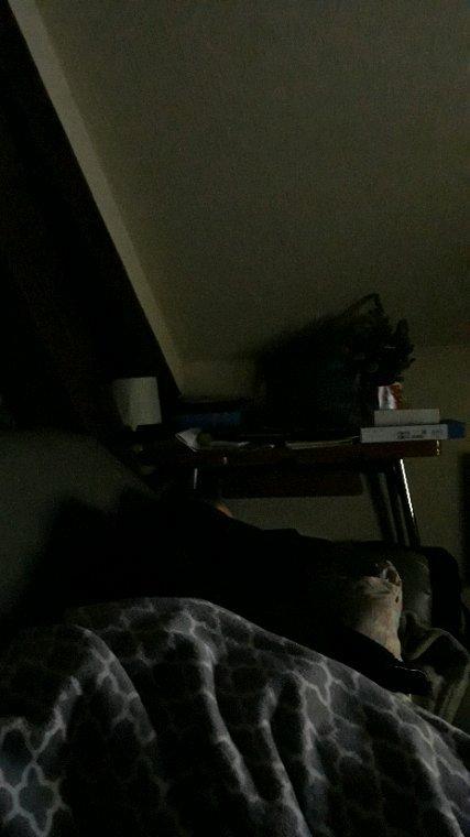 Mon homme qui dort sur le canapé le pauvre il est fatigué du.boulot