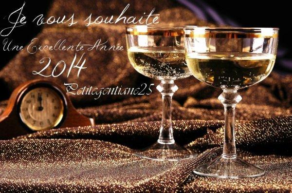 Bonne et heureuse année a tous !!!
